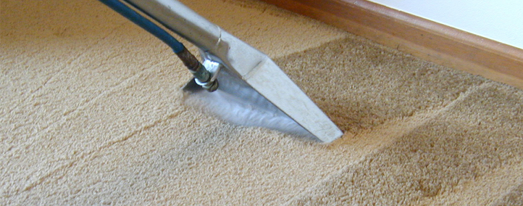 химчистка ковров у Вишневом