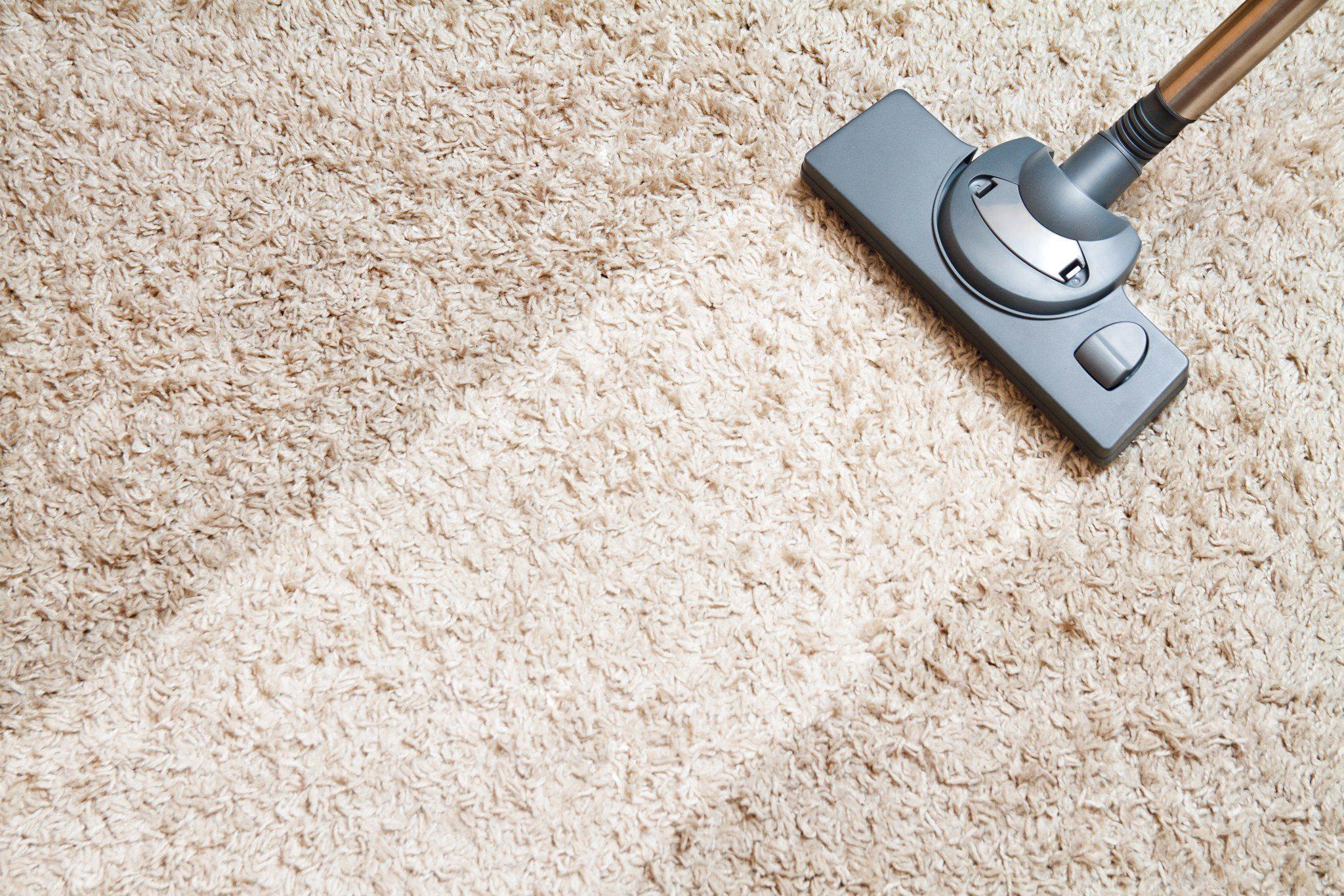 як правильно чистити ковролін