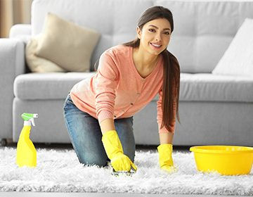 хімчистка килимів від професіоналів Profclean