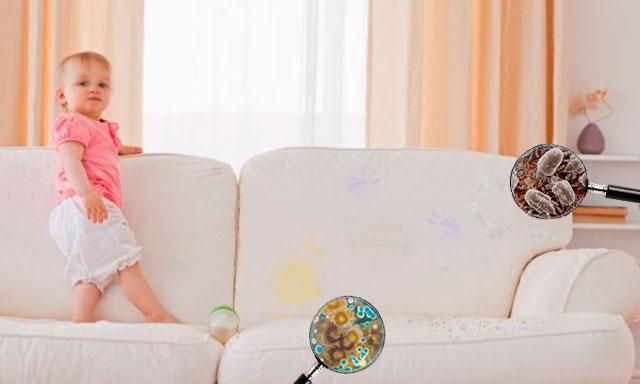 Почему не стоит чистить мягкую мебель самостоятельно